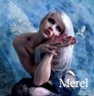 Medium Merel